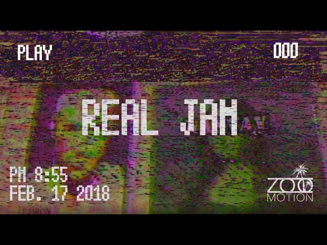 ZOO REAL JAM - 000