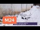 Гору вскрытых посылок нашли в столичном Чертанове - Москва 24
