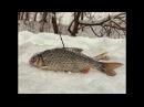 Рыбалка в Глухозимье на верхней Москве-реке. Марафон в 15 км. РОЗЫГРЫШ ПРИЗОВ