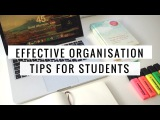Tips for EFFECTIVE organisation! | Back to school 2017 | Lisa Tran