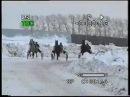 Октябрьский 2010 скачка на пони заезд 4лет орл рыс пор
