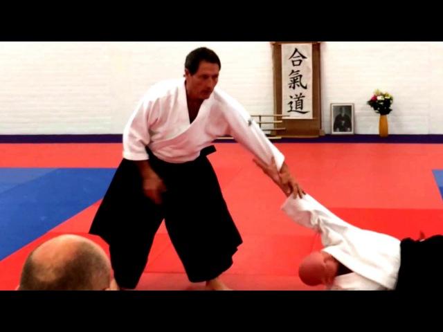 Aikido: BASICS Christian Tissier Shihan