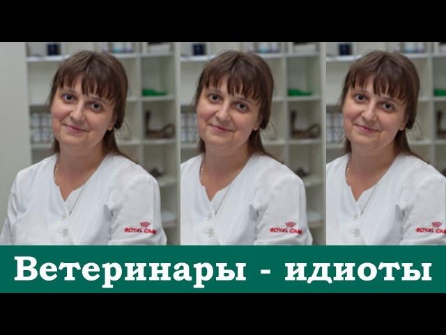 Сделаем ветеринаров-ид***ов известными (часть 1) - 4 диагноза без анализов и назнач ...