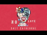 Salt Cathedral - No Love Ultra Music