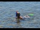 Мама- медуза, Папа-медуз, ребёнок- медузёнок