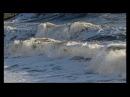Морская волна.Крым в декабре, Черное море, Судакская бухта.