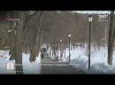 В Абрамцеве открылась новая пешеходная зона