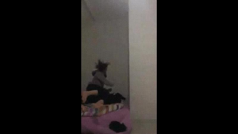Astrocat secret training mission