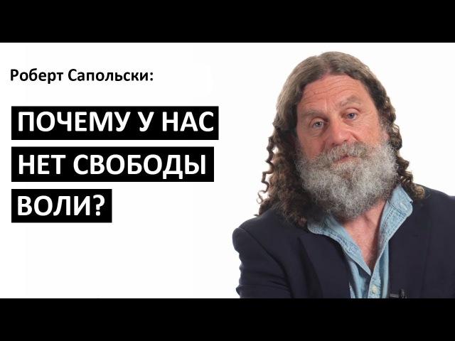 Роберт Сапольски: Почему у нас нет свободы воли [Big Think]