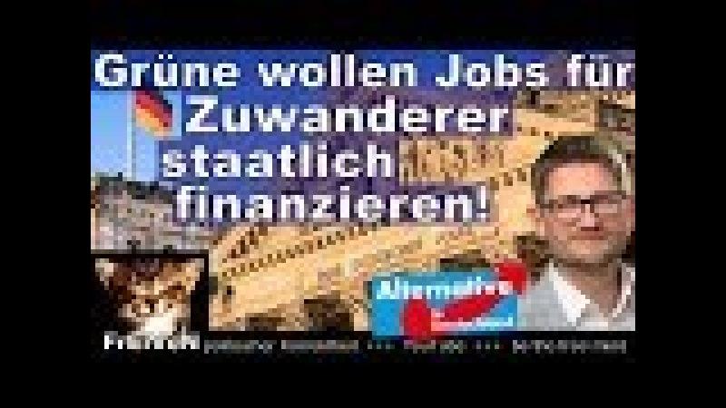 Springer (AfD) Jobs für Zuwanderer zu 100% staatlich bezahlen lassen? Zu Lasten dt. Arbeiter * BT HD