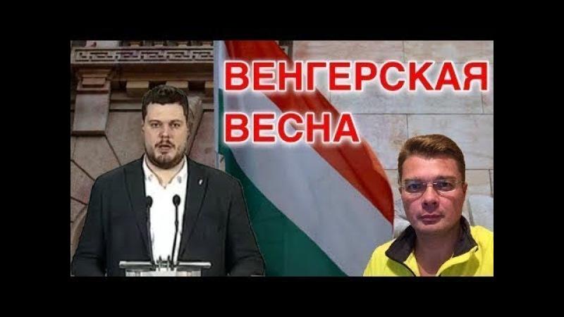 Поляки спалили Бандеру, соратник Тягнибока призвал к решительному отпору — Семченко