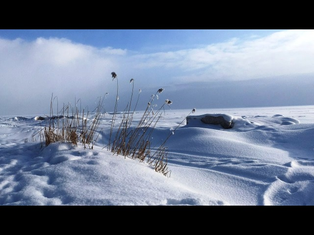 VLOG 21. С первым днем весны! Мото Масленица. Пухтолова гора. Зима 2018, Санкт-Петербург