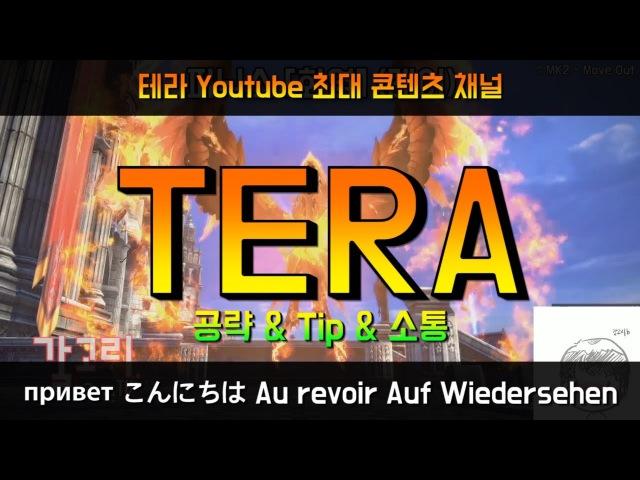 [TERA Streaming] 휴먼권술사 키우기 3 / Human male Brawler