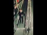 В Новочеркасске живодёр посадил кошку на движущийся эскалатор
