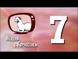 Неделя с Горностаем. Выпуск №7, 27.12.17