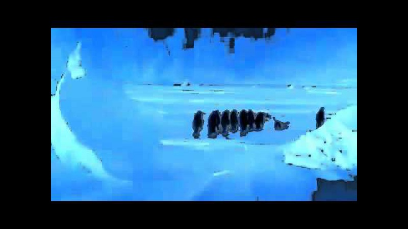 Penguin Falls Down Resulting In Best Sound Ever