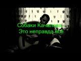 Собаки Качалова - Это неправда всё (кавер 209)
