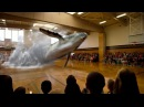 7D Hologram Technology Whale Fish Video 7D Hologram Technology Show in Dubai