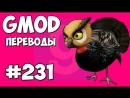 Михакер Garrys Mod Смешные моменты перевод 231 - БЕШЕНАЯ ИНДЕЙКА Гаррис Мод