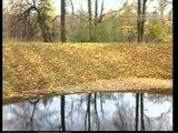 Нина Пантелеева Листья жёлтые
