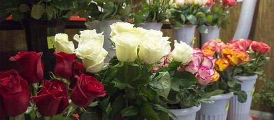 Заказать цветы в витебске с доставкой выбрать подарок на юбилей маме