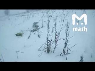 Первое видео с места падения самолета Ан-148