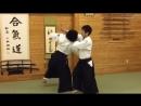合気道 小手返し・入身投げ Aikido - Kotegaeshi , Irimi Nage.mp4