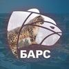 IVANOVONEWS | Новости Иваново | БАРС