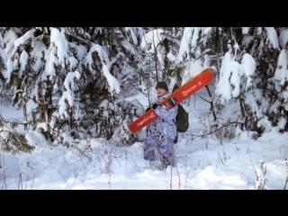 Зимняя охота в лесу