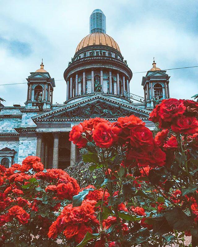 Роман Вито | Брянск