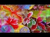 С днем рождения в январе Красивая музыкальная видео открытка Видео поздравление