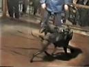 DA-KNIFE'S Chup (Don Zay) 1xW (GIS) vs BERNARDO