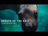 Breath of the East