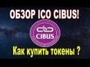 Обзор ICO Cibus Как купить токены блокчейн платформы для пищевой промышленности Cibus