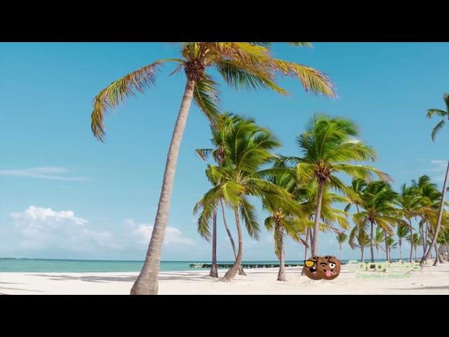 Лучшие пляжи Доминиканы - Пляж Хуаниййо - посетите лучшие пляжи Пунта Каны Доминиканская Республик
