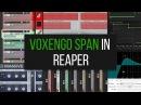 SPAN в программе Reaper