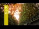 Mushishi Mushishi Zoku Shou OST All Ending Themes by Toshio Masuda 蟲師