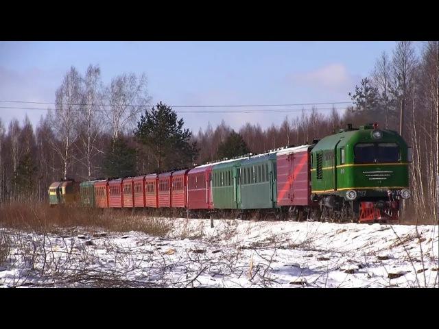 Узкоколейная железная дорога ТУ2-131 и ТУ2-076 / Narrow gauge railway TU2-131 and TU2-076