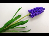 ABC TV How To Make Grape Hyacinth Flower From Crepe Paper - Craft Tutorial