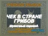 Учебник Улыбок  Чек в Стране Грибов (Шуточный перевод)