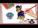 Щенячий патруль раскраска Гонщик Видео для детей