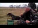 Охотничьи традиции...(Hunting tradition...)