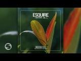 Calippo - Alive (eSQUIRE Remix Edit)