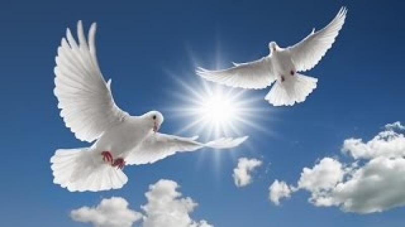 Ильдар Южный - Летите голуби