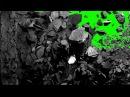 FREE HD Green Screen ROCKS SMASHING WALL REVEAL