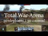 Total War Arena Слонокатка на 30 слонов 30 elefants!