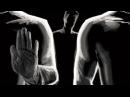 Ангелы Хранители в Исламе Начало и Конец 28 Омар Сулейман