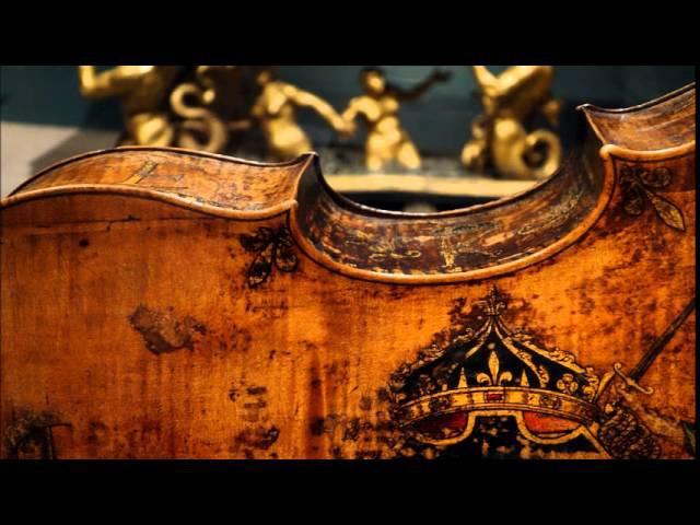 G.B. Platti cello Concerto in D, Stefano Veggetti