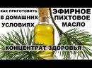 КАК сделать ЭФИРНОЕ ПИХТОВОЕ масло в домашних условиях Лечебные свойства пихты