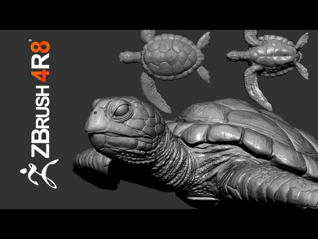 Sculpting a Carey Turtle From Scratch in ZBrush 4R8 - Part 01